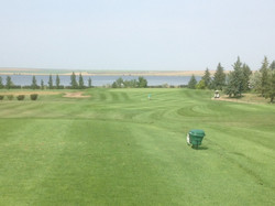 White Tee Box #9… dry year