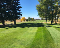 #1 Tee Box - Fairway View 2018