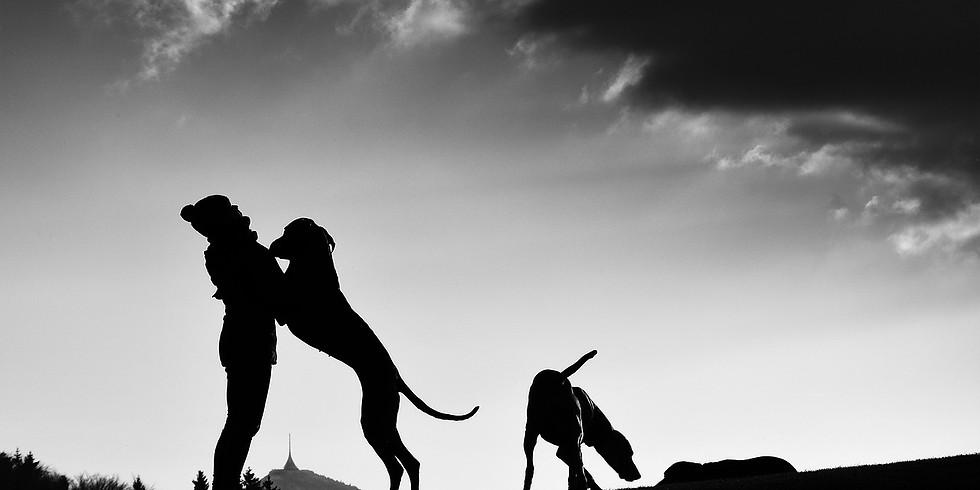 Vortrag mit kurzer Pause: Hund und Mensch – im Wechselspiel der Emotionen