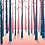 Thumbnail: Postcard - Sunny winter forest
