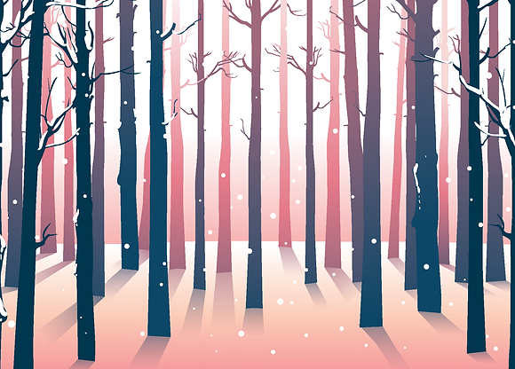 Postcard - Sunny winter forest