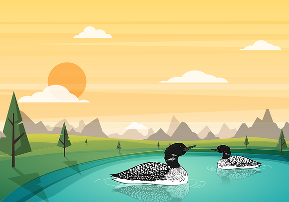 Postcard - Duckies on a lake