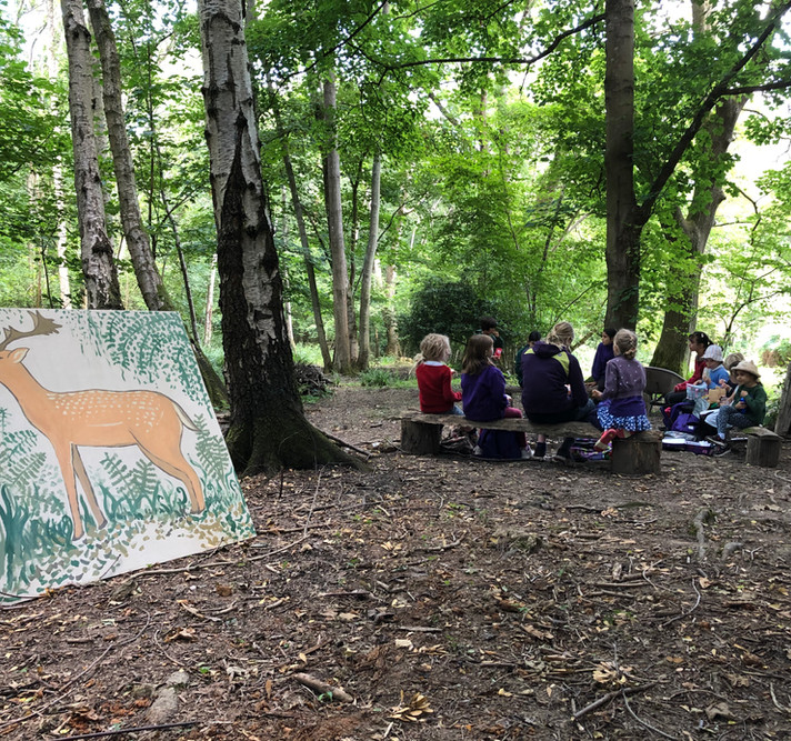 Woodland Picnic