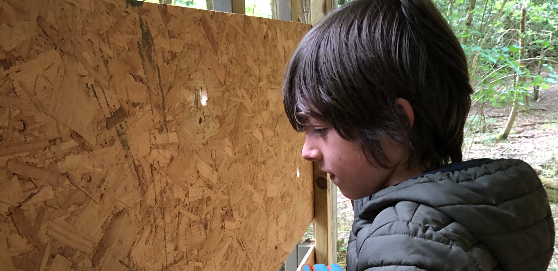 Drilling holes in the nature hide.