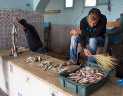 Fish Market, Djerba