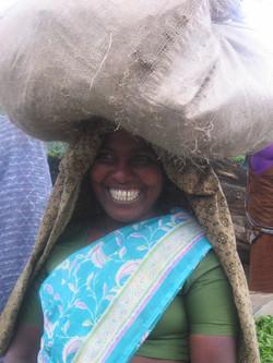 Plantation Worker, Kerala