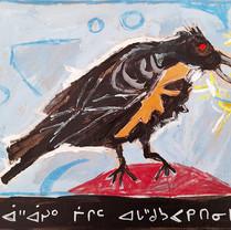 âhâsiw mîcim acahkosa isko ê-wâpahk / crow holds star seed
