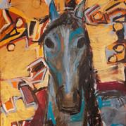 vattenhäst / waterhorse 25.12.20