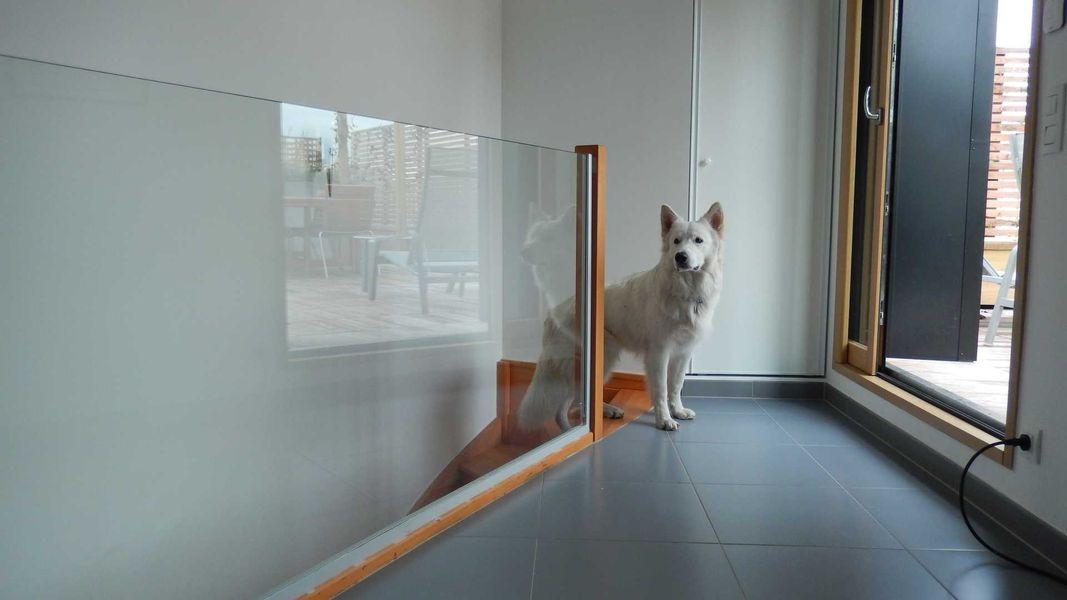 Garde-corps en verre avec structure bois