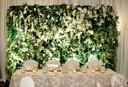 Greenscape-Design-Floral-Green-Wall-Vert