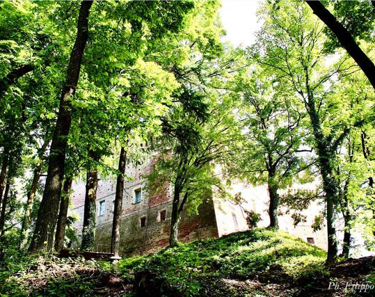 Il lato nord del Castello visto dal parco
