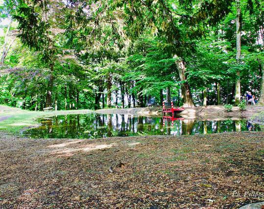 Il Lago disegnato dal Kurten