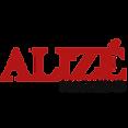 logo-alizelavie-magazine-carre.png