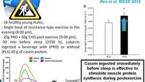 Protein innan läggdags för muskelökning