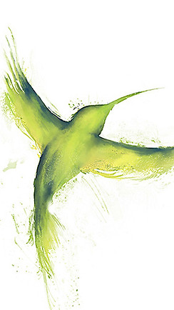 franz-bird.jpg