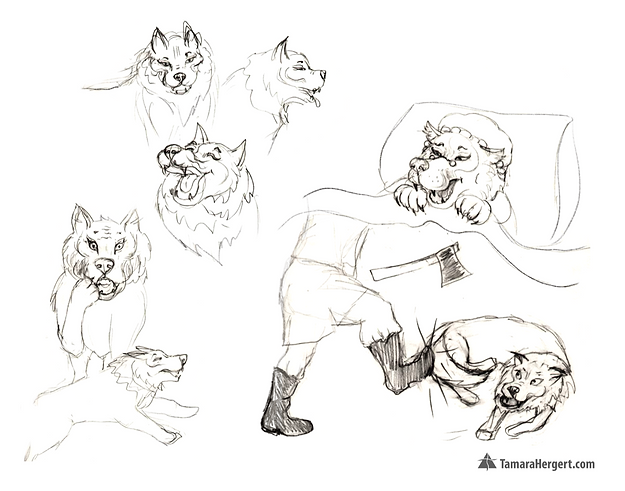 Red Riding Hood - Sketches by Tamara Her