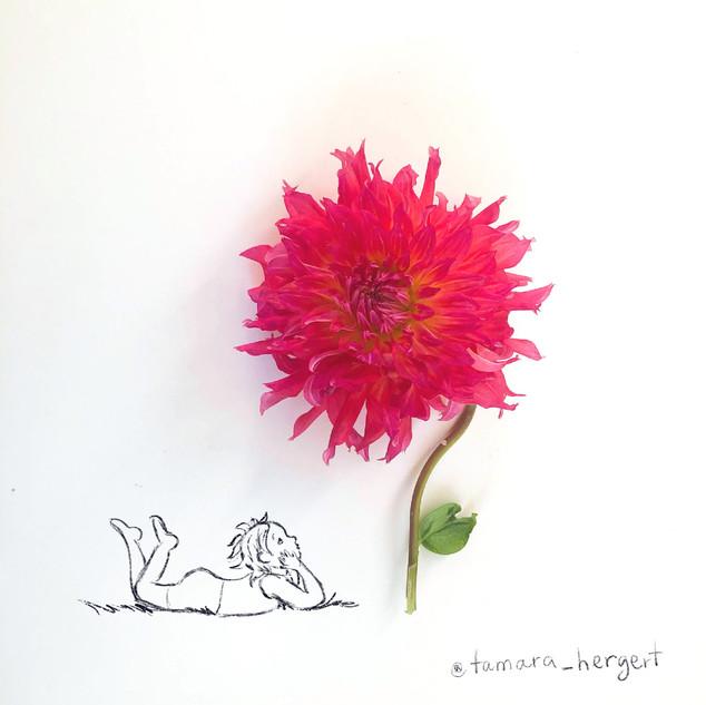 Gazing_Sketch_by_Tamara_Hergert.jpg