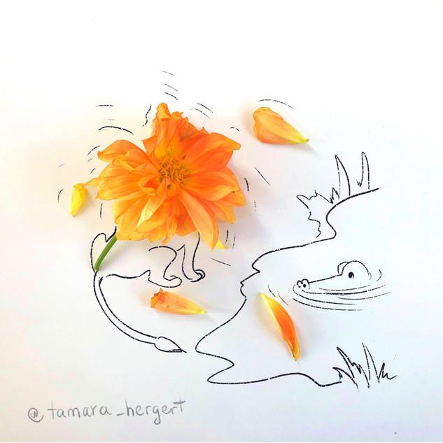Shaking_Off_Sketch_by_Tamara_Hergert.jpg