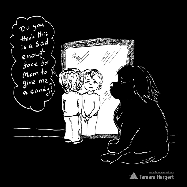 Big Paw comics by Tamara Hergertrgert.