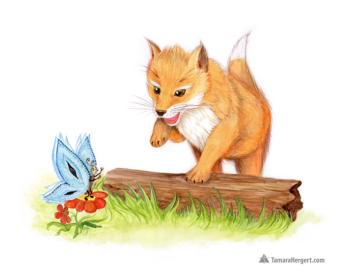 Fox and butterfly illustration by Tamara