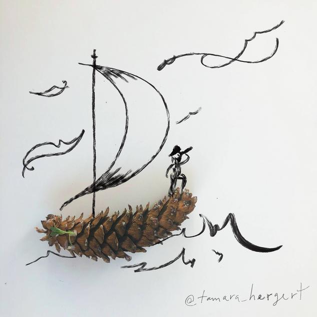 Pirate by Tamara Hergert.png