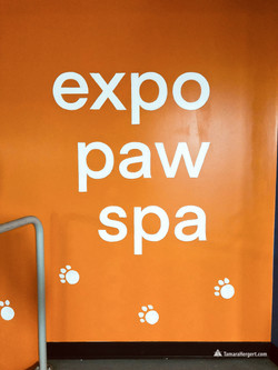 Expo Paw Spa mural by Tamara Hergert 6