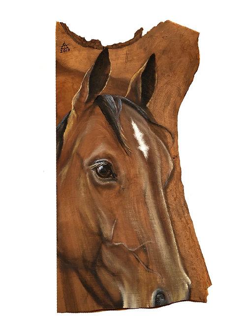 """Horse"" original oil painting by Tamara Hergert"