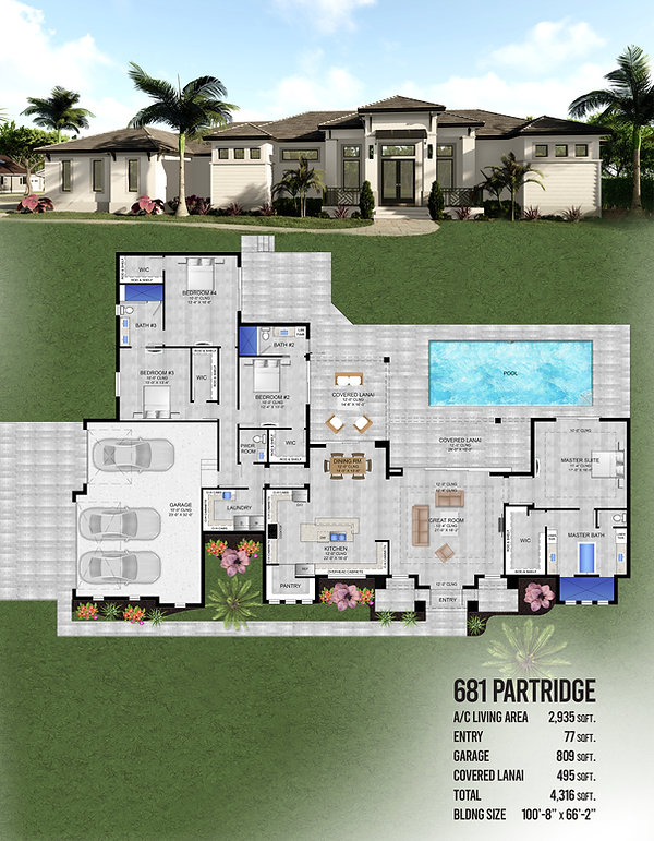 681-partridge.jpg