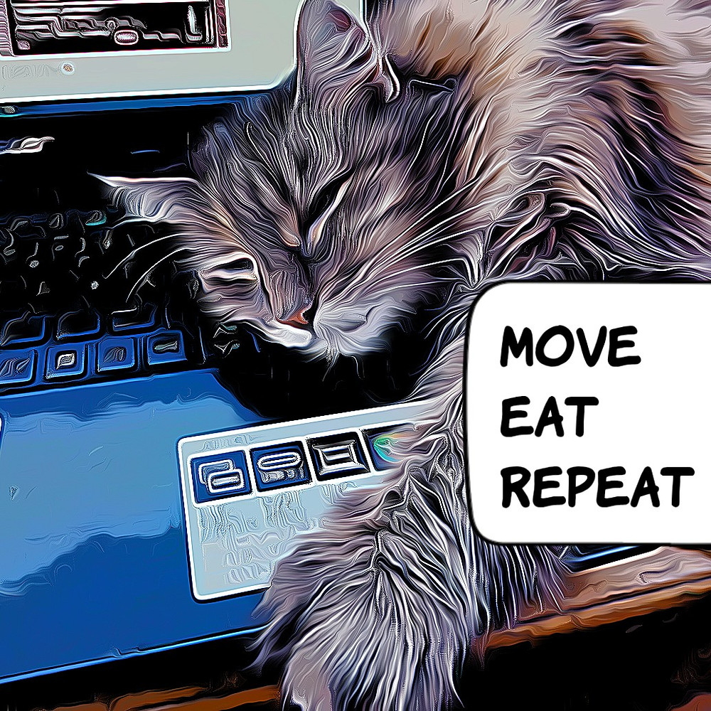Move - eat - repeat. Von Kirsten Surwehme