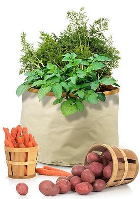 Harvest+Root+Vegetable+Grow+Bag+Pot+Plan