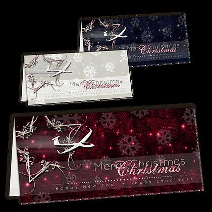 Weihnachtskarte Segelflug Set 2
