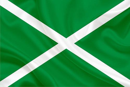 Флаг ФТС