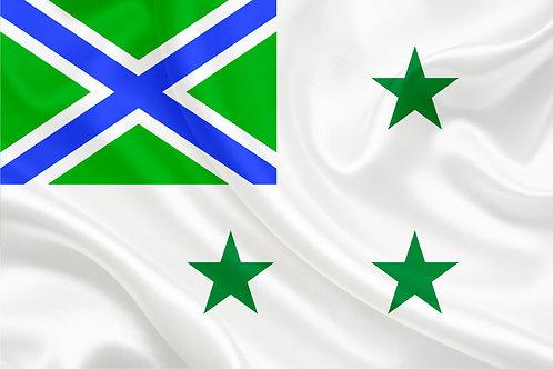 Флаг Заместителя пограничной службы