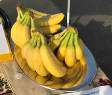 Bananas for our walkers.