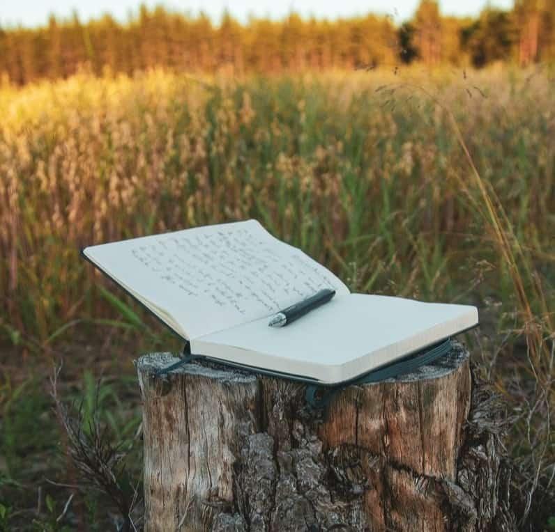 Open journal in a field