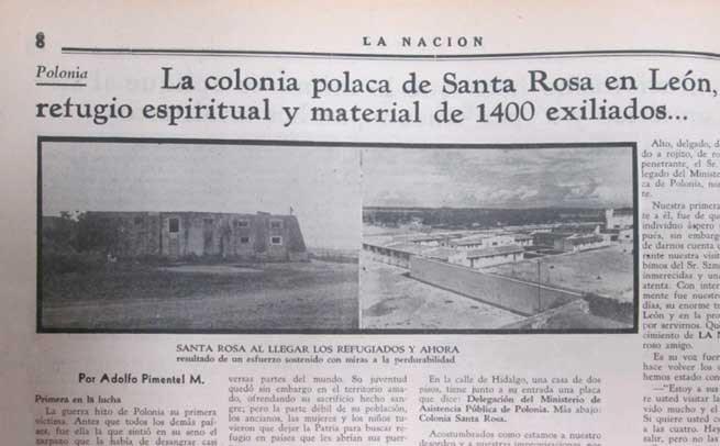 Imagen Bonito León (2)