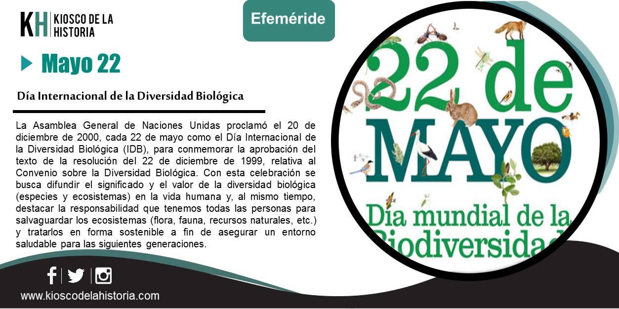 Diapositiva344