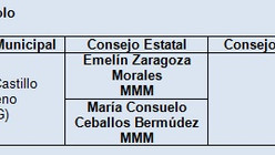 Resultados en las elecciones internas del PAN en Guanajuato