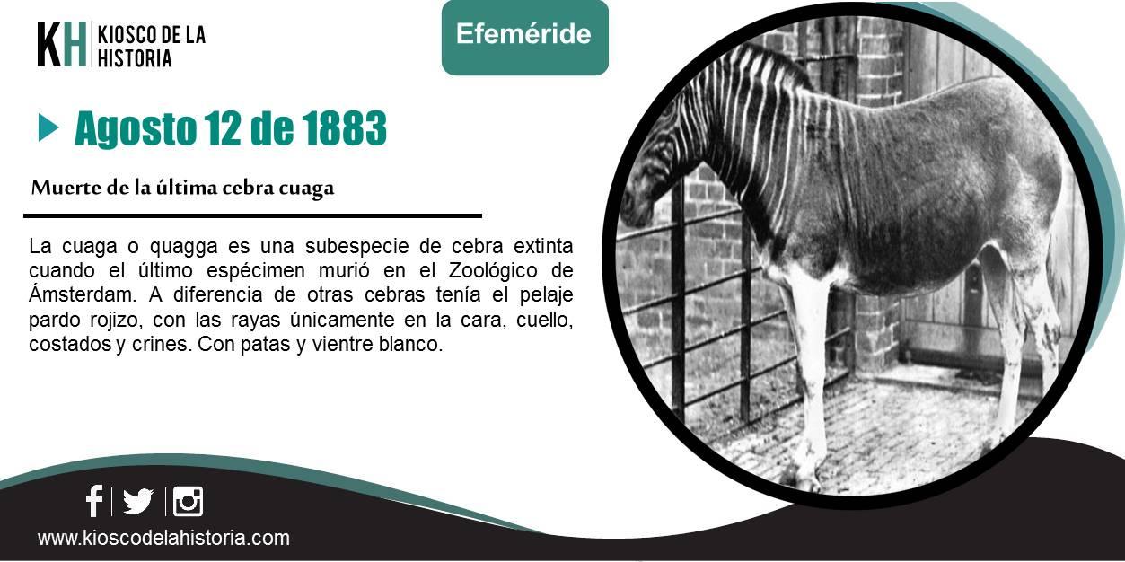 Diapositiva165