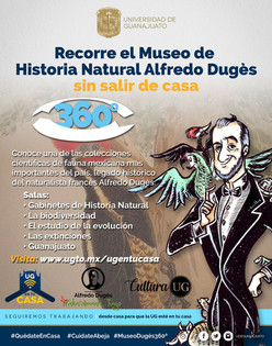 Recorrido virtual en 360° en el Museo de Historia Natural Alfredo Dugès