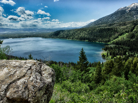 More hiking in Wyoming- Wildflower Trail, Casper Ridge Loop Trail, and Phelps Lake
