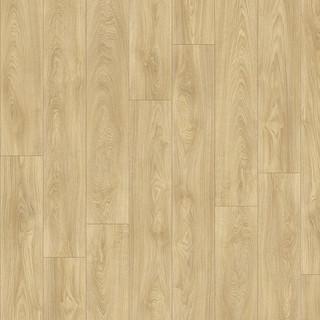 laurel-oak-51332_2.jpg