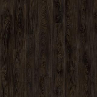 laurel-oak-51992.jpg