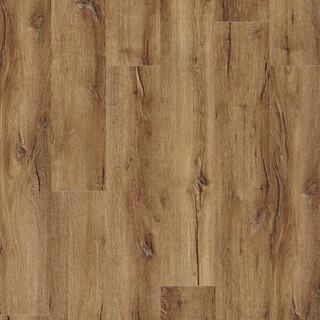 mountain-oak-56440.jpg