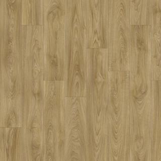 laurel-oak-51262.jpg