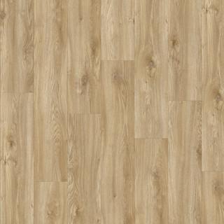 sierra-oak-58346.jpg