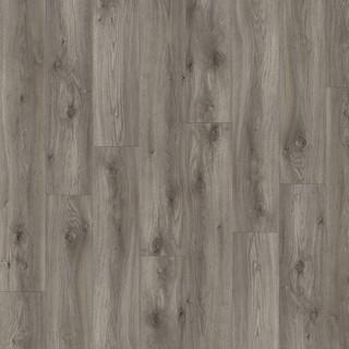 sierra-oak-58956.jpg
