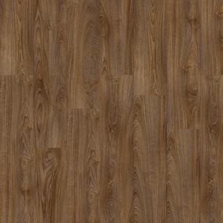 laurel-oak-51852_5.jpg