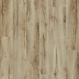 mountain-oak-56230.jpg