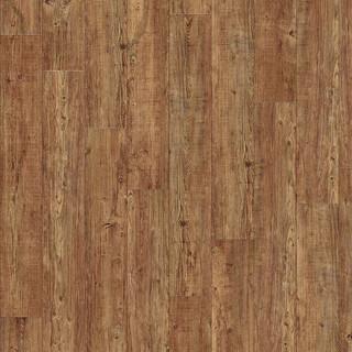 latin-pine-24874.jpg